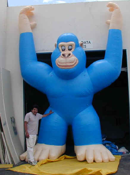 Blue gorilla - photo#27